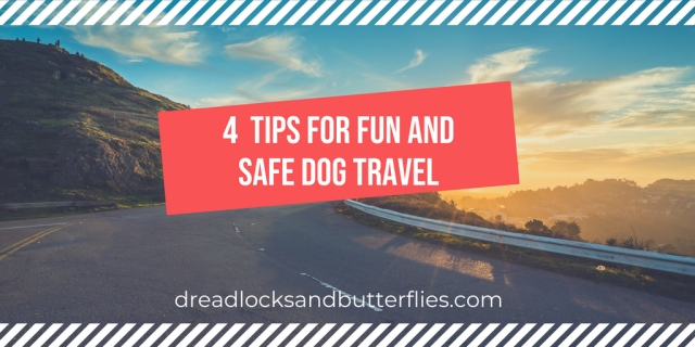 4 Tips to keep zero safe and comfortable while traveling on the road (1)