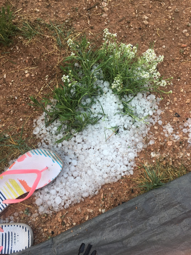 Hail storm New Mexico